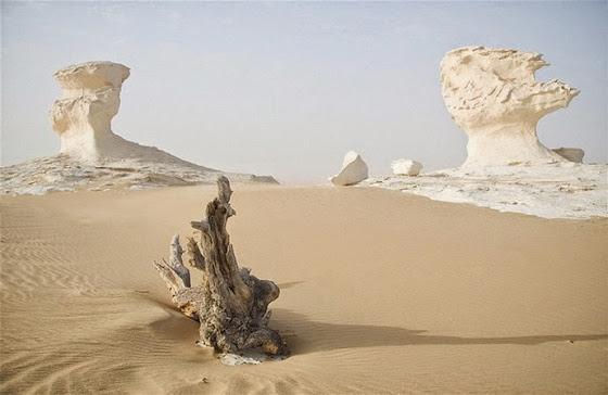 Farafra: H παράξενη λευκή έρημος