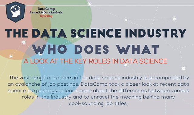 Who Does What in the Data Science Industry