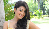 Cute pranitha in a yellow saree
