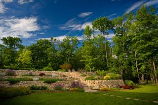 Jardín con flores junto al bosque es paisaje natural