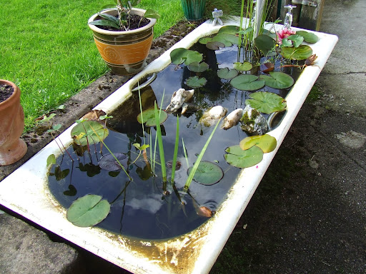 Fill your backyard with fish pond made from unused stuff for Filling in a pond