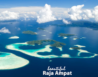 Best diving raja ampat indonesia