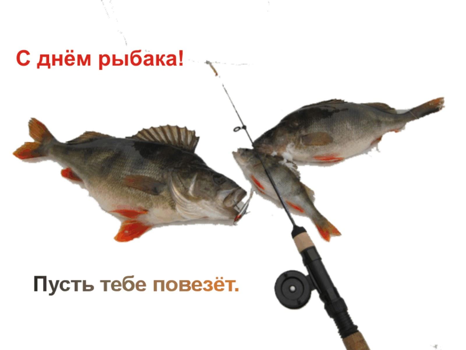 Открытки с днем рыбака 41