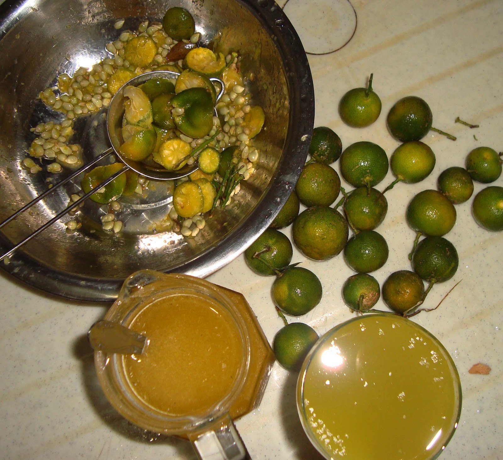 onion and calamansi extracts as coackroach The feasibility of malunggay leaves moringa oleifera as an alternative cockroach killer researcher renzel jane a adal gtade 9- ste- 26 the feasibility of malunggay as an alternative insecticide essay submitted by the effect of onion and calamansi extraxt analysis of investment.