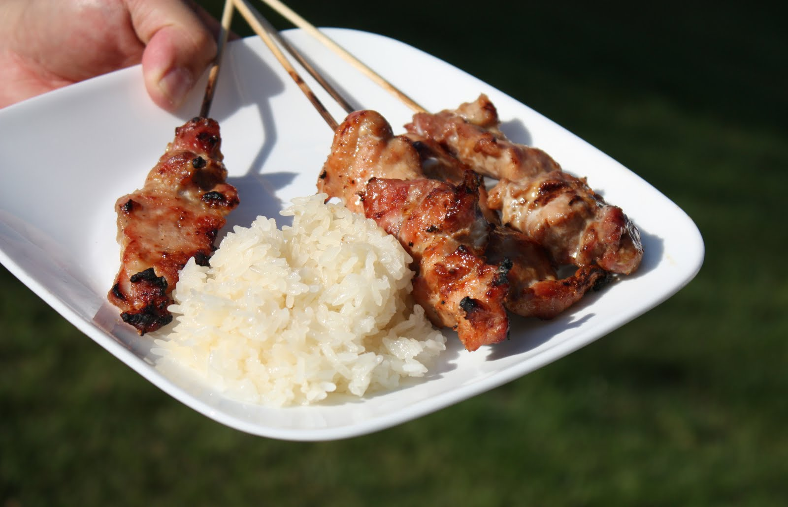 Thai Grilled Pork on Skewers (Mu Ping หมูปิ้ง ...