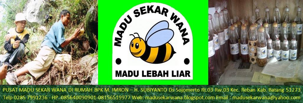 PUSAT MADU ASLI – MADU SEKAR WANA – Madu Lebah Liar–Manfaat Madu–Khasiat Madu-085640090901-7FCD9CD0