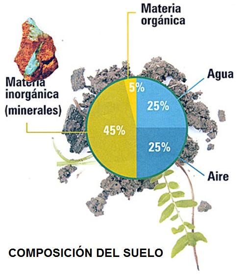 Estudiando la tierra suelo for Componentes quimicos del suelo