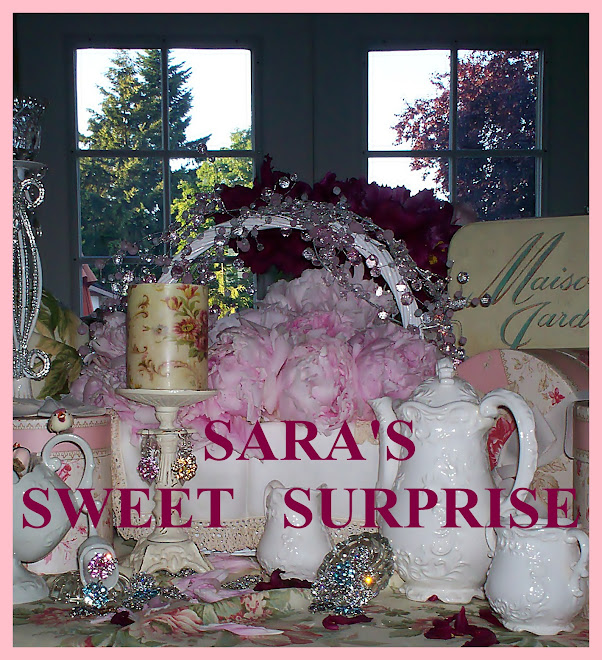 Sara&#39;s Sweet Surprise
