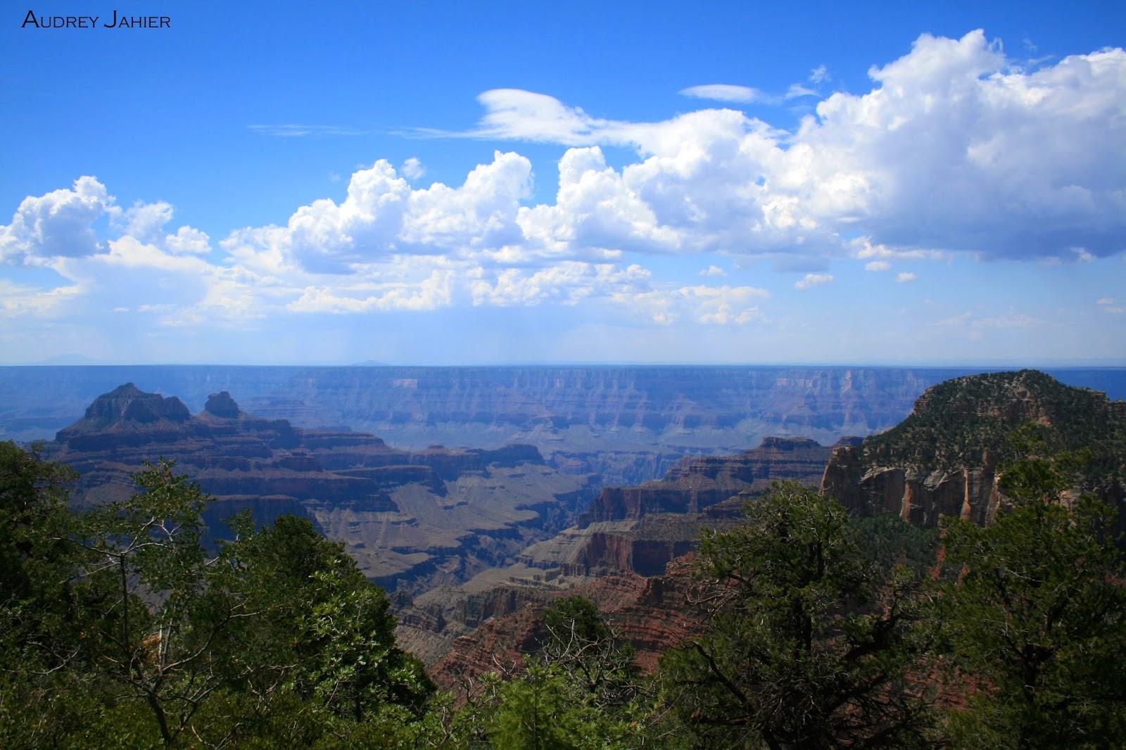 grand canyon-north rim-usa