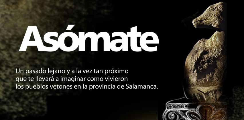http://www.salamancaterritorioveton.com/territorio_veton.php