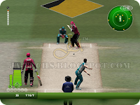 EA Cricket 2013 Screenshot 11