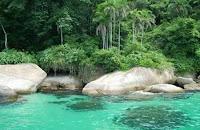 ydtkseo playas brasil trinidade