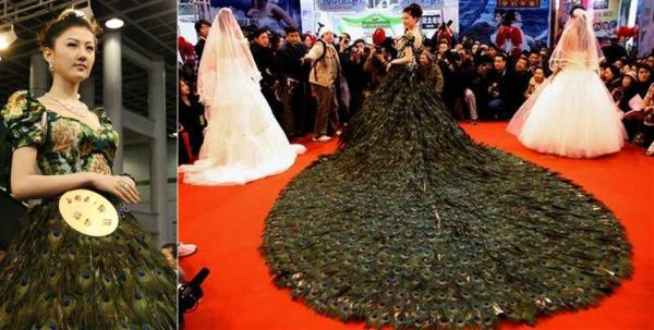 The most expensive dress in the world 2013