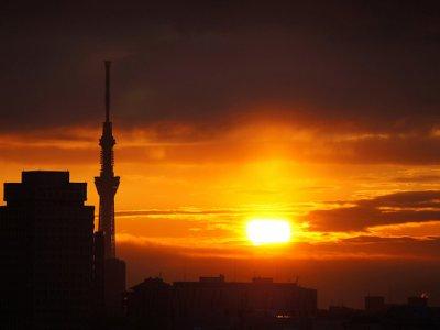 amanhecer Tokyo Sky Tree