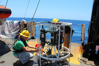 Collecting water from the rosette CTD