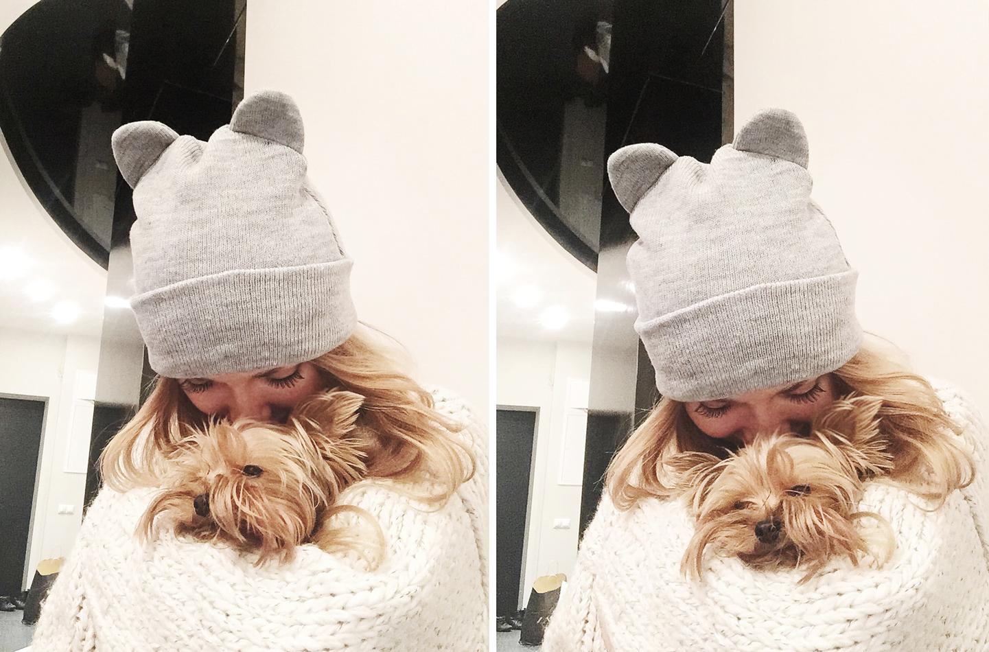 собака, йорк, йоркширский терьер, радости жизни, шапка Zara