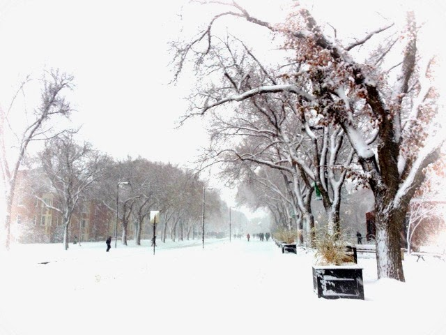 Winter at UAlberta