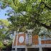 八幡図書館 2015年 盛夏