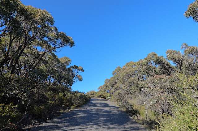 sunny road to mount william