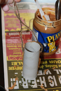 cardboard roll bird feeders