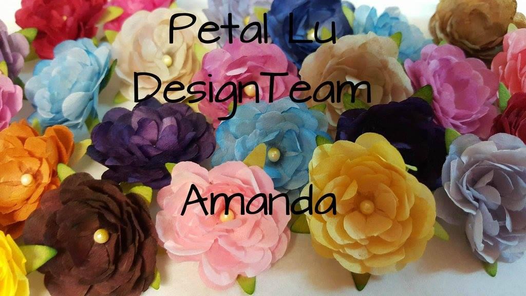 DT for Petal Lu