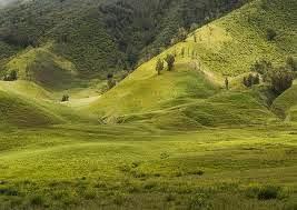 Bukit Savana - Bromo Tengger