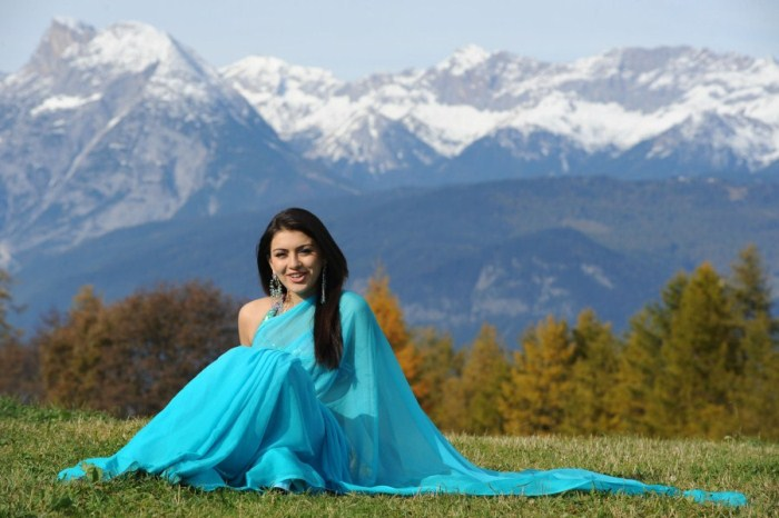 hansika motwani saree hot images
