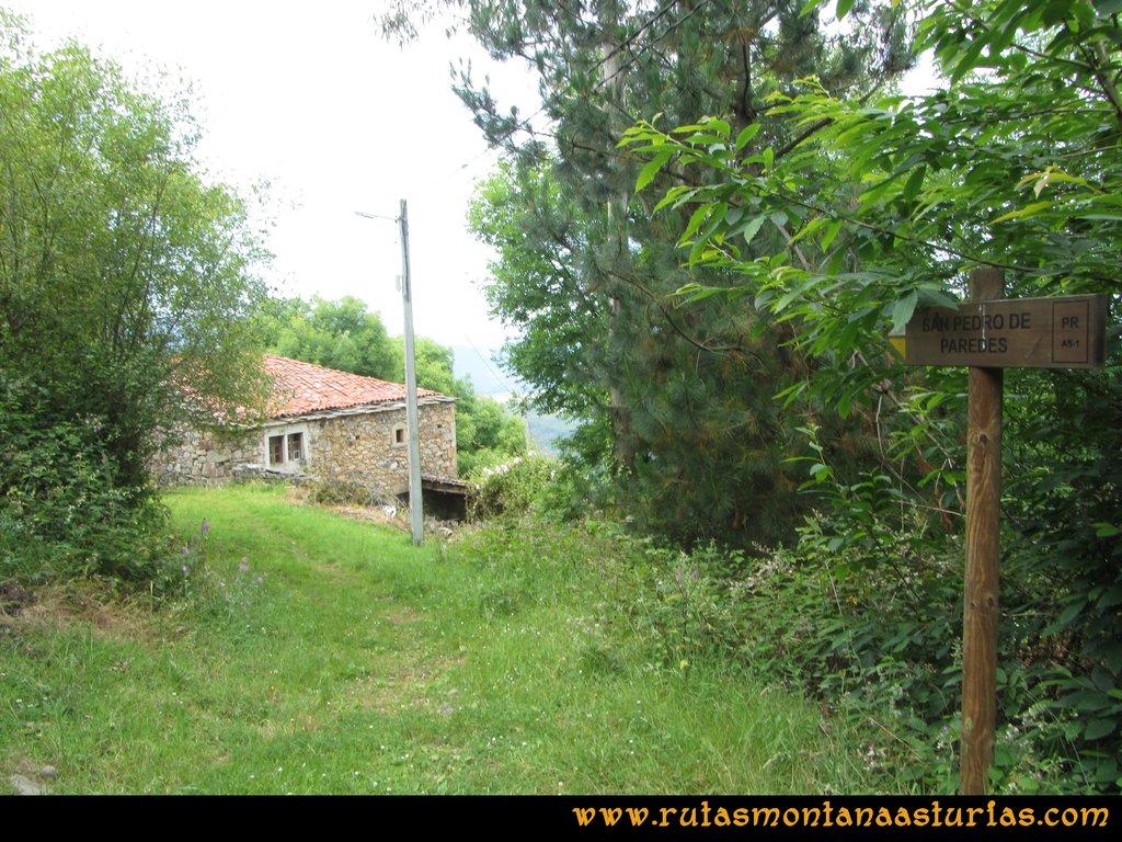 Ruta Hoces del Esva: Adrao, desvío hacia San Pedro de Paredes