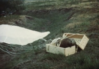 http://www.kxly.com/news/northwest/idaho-agency-finds-historic-footage-of-parachuting-beavers/35992312