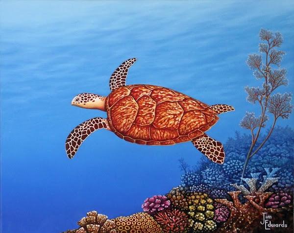 Sea Turtle 16 x 20