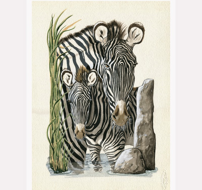 http://www.applearts.com/content/zebra-colt-wildlife-illustration-portrait-painting