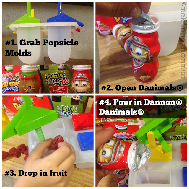 popsicles, dannon, danimals, popsicle molds, easy popsicle recipe