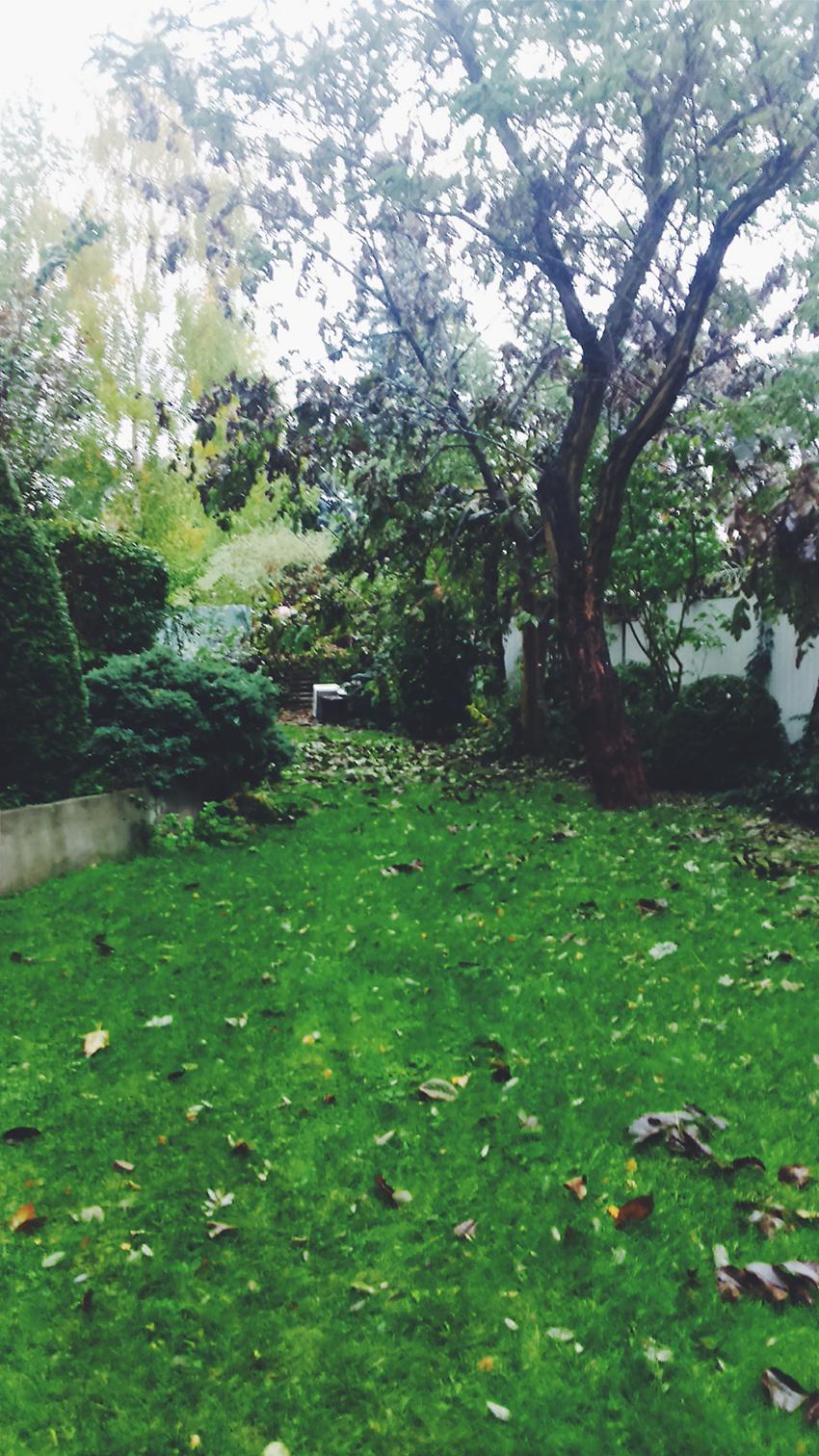 Porządki w ogródku