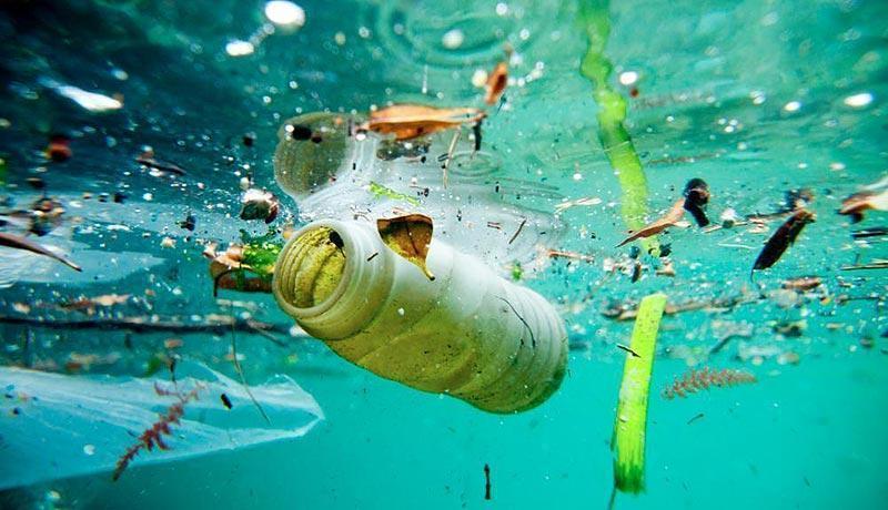 mas plastico que peces 2050