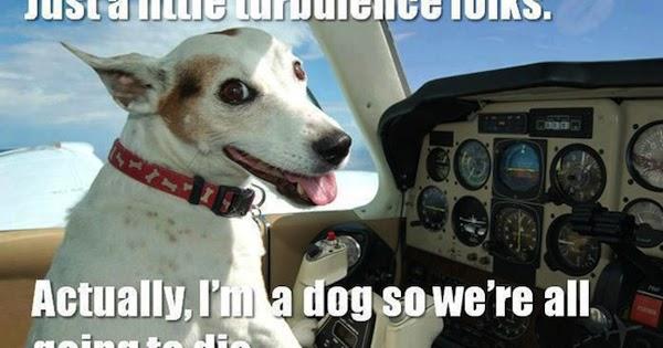 Blighty Turbulence