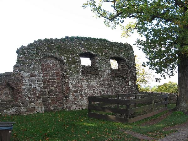 The Lost Fort: Lost Branches on the Family Tree - The ...