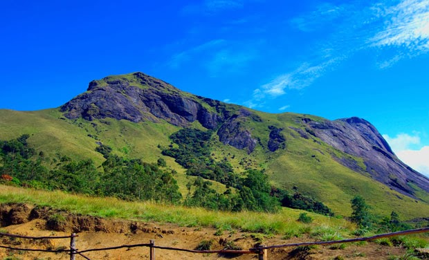 Munnar - One of the most popular Hill Sations in South India
