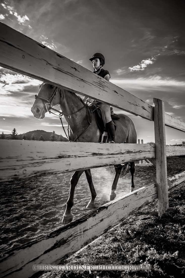 monochrome photo of an equestrian rider in the ring captured by chris gardiner photography