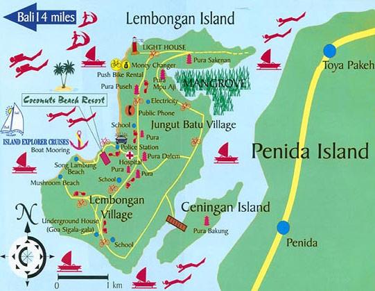 Siapkan Kamera Anda Tour Mangrove Rumah Bawah Tanah Pantai Yang Indah Tentunya Berpetualang Di Dua Pulau Menyebrang Ke Nusa Ceningan Dari