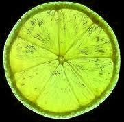 Minha Vida de Limão