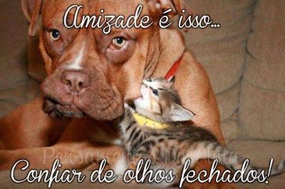 Mensagens para Facebook e imagens engraçada para facebook Amizade