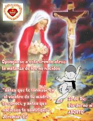 28 DE DICIEMBRE DIA DEL NO AL ABORTO (clic en la foto)