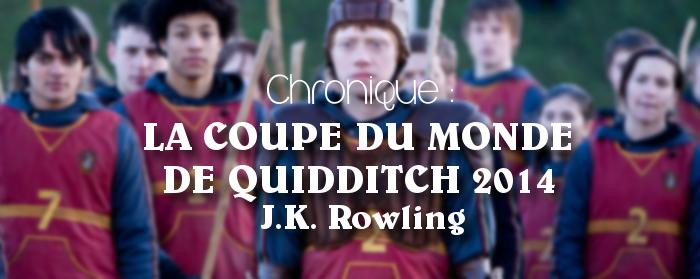 Chronique la coupe du monde de quidditch 2014 de j k - Harry potter coupe du monde de quidditch ...