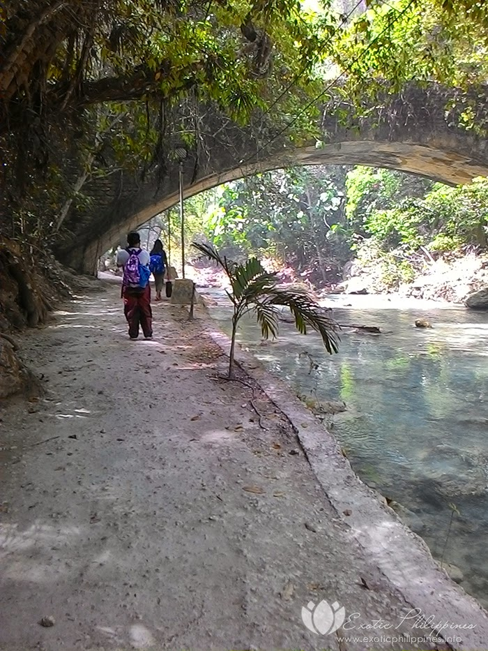 travel guide for your day trip to kawasan falls in badian