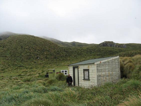 Isole deserte 565Antipodes_Castaway_Hut