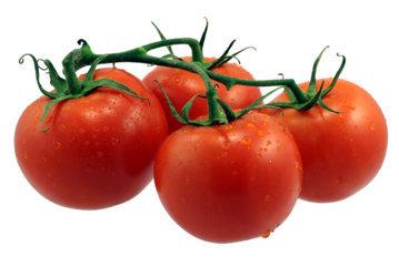 「PAK遮断剤」を含む(自然栽培)トマトの茎