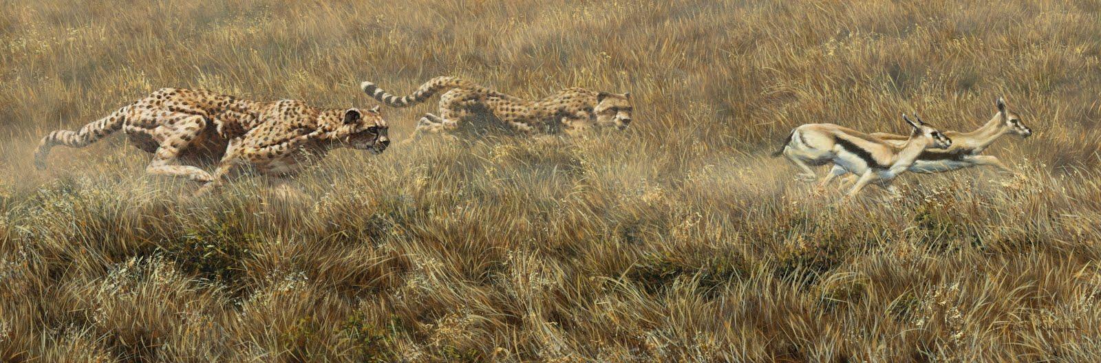 Alan M Hunt Wildlife Artist Original Paintings