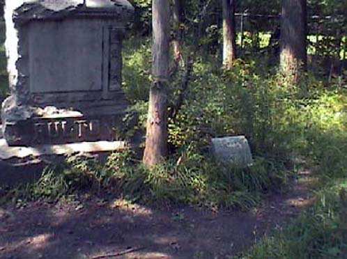 Edward Shanahan's photo of Headstones at Bachelor's Grove Cemetery