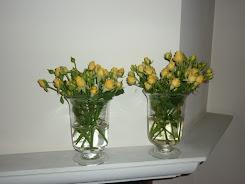 Rosas Baby Amarillas