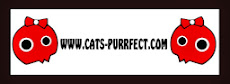 Cats-Purrfect